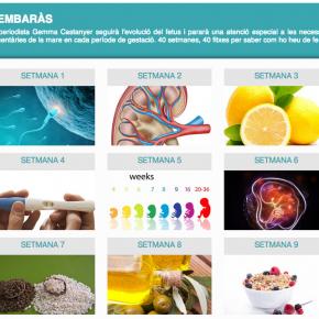 Consells nutricionals per a l'embaràs, setmana a setmana i en català