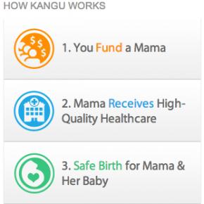 Kangu.org: micro-donacions per a futures mares i nadons